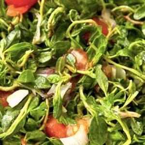 ebegümeci salatası nasıl yapılır